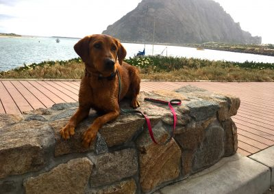 Riley Beach Trip