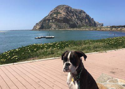 Molly Beach Trip
